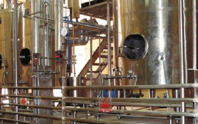 Casein & Whey Processing Plant